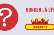 Những điều bạn chưa biết về bong88