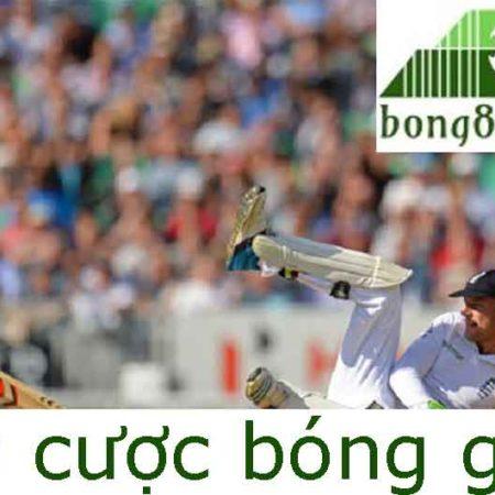 Cricket – Chơi Cá Cược Bóng Gậy Tại Nhà Cái Trực Tuyến